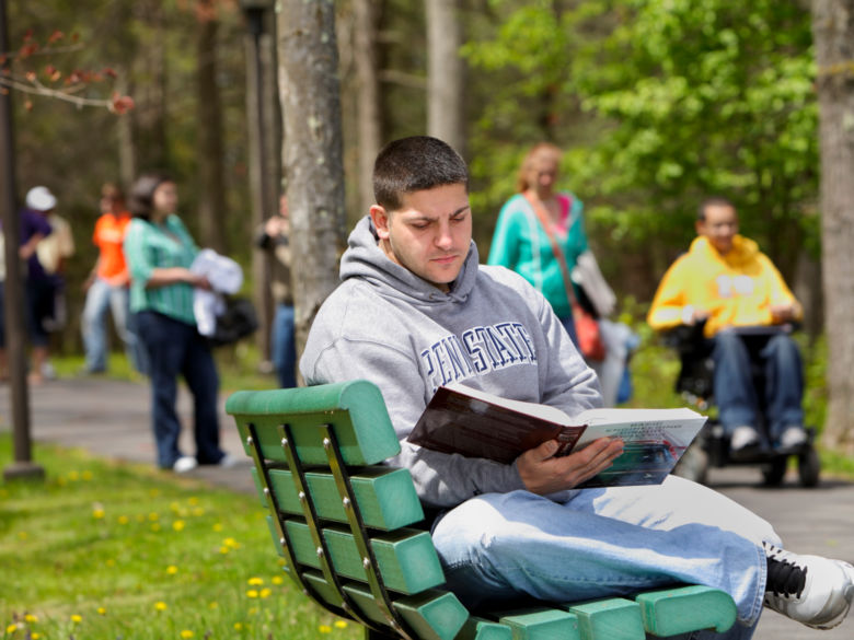 Student studying on a bench outside near the forest